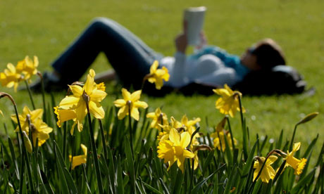 summary of the poem daffodils by wordsworth