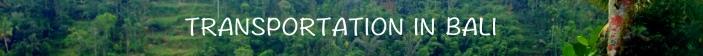 TRANSPORTATION GREEN