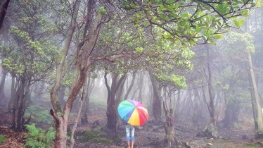 That's me and my rainbow umbrella :D