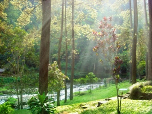 The Maribaya Hot Spring.